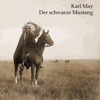 Der schwarze Mustang (audiobook)