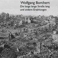 Die lange lange Straße lang (audiobook)