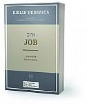 Biblia Hebraica Quinta (BHQ). Gesamtwerk zur Fortsetzung / Job