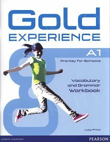 Gold Experience A1 ćwiczenia