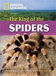 The King of The Spiders+MultiROM