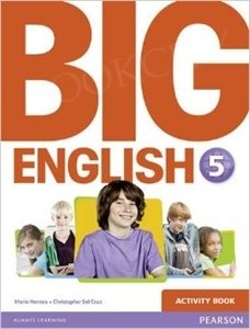 Big English 5 ćwiczenia