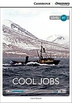 Cool Jobs (poziom A1) Book with Online Access