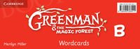 Greenman and the Magic Forest B Wordcards (Pack of 48)