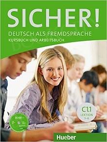 Sicher! C1 Medienpaket Płyta audio CD (2szt.) + Płyta DVD (2szt.)