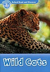 Wild Cats Book
