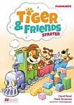 Tiger & Friends Starter Flashcards