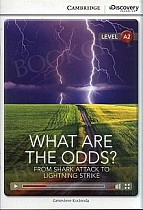 What Are the Odds? From Shark Attack to Lightning Strike Book with Online Access