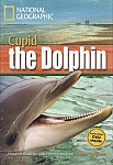 Dolphin Named Cupid + MultiROM