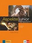 Aspekte Junior B1+ Übungsbuch mit Audios zum Download