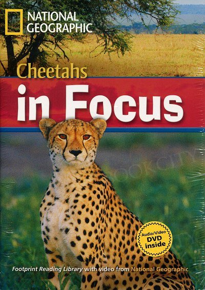 Cheetahs in Focus + MultiRom