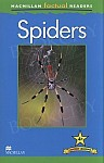 Spiders Level 4 Book